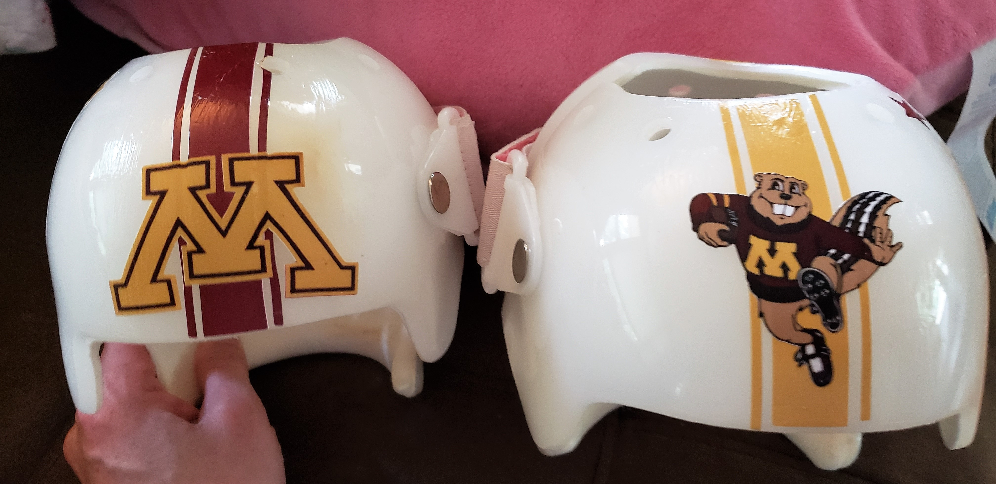 University of Minnesota cranial bands