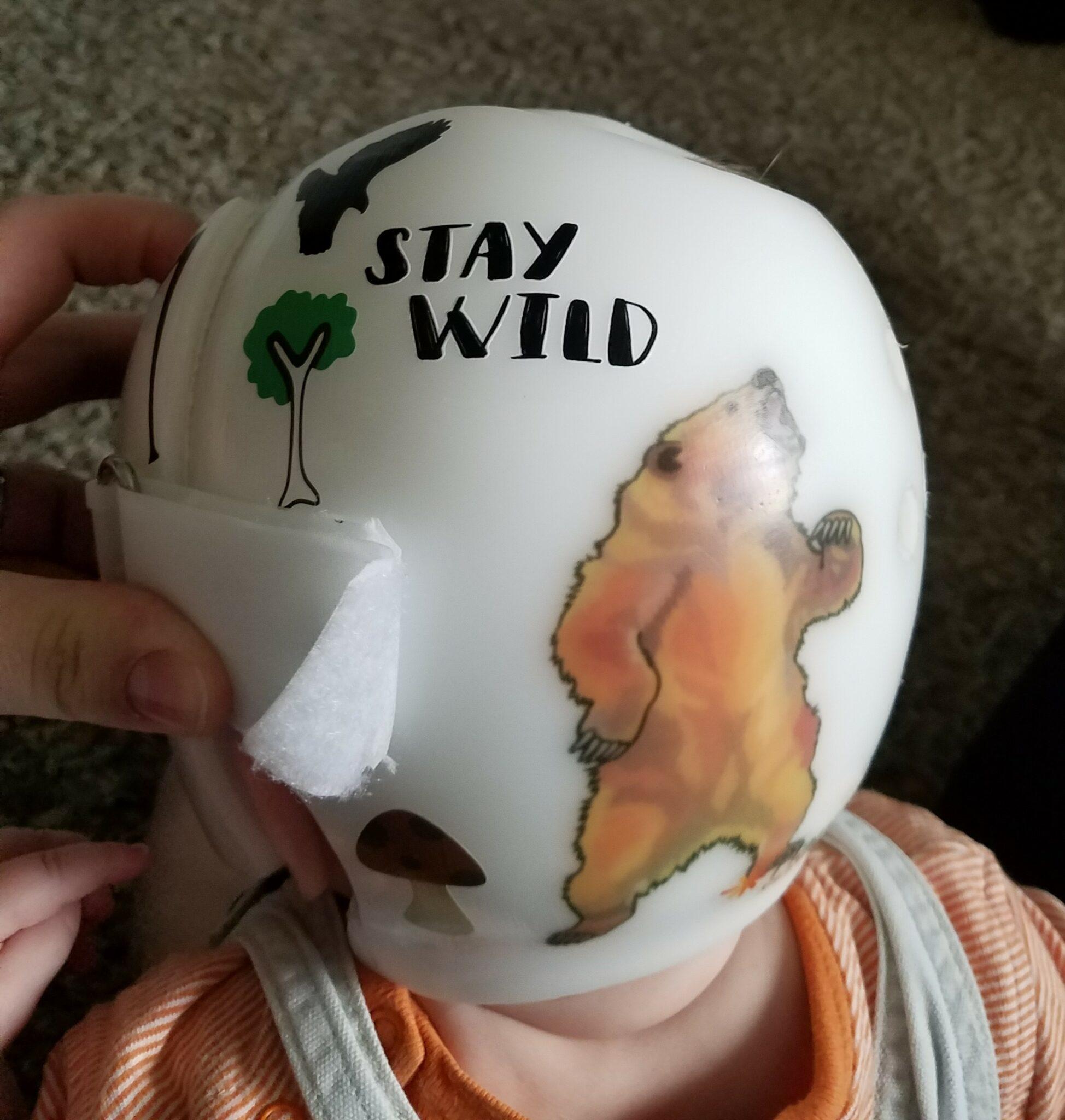 Baby Bear cranial band